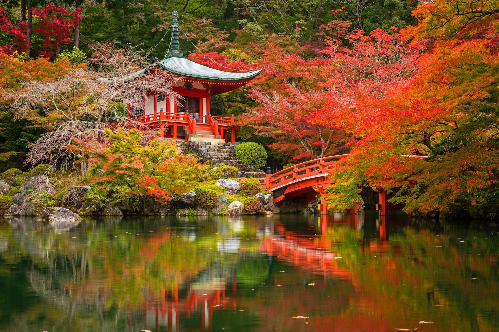 Japan Yoga Retreat 2020 | Reclaim Your Self