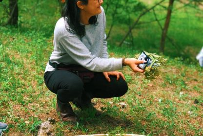 Foraging on our Japan yoga retreat