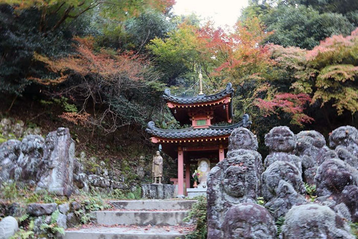 japan yoga retreat adventure visiting japanese temple autumn trees