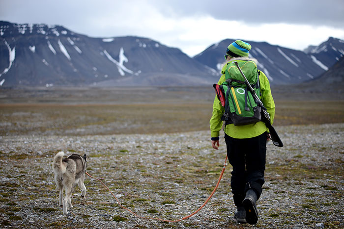svalbard adventure yoga retreat exploring the wilderness with husky